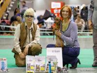 Formula Uspeha Tequila (KS) – Best Puppy, res.Best in Show Puppy