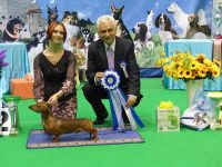 Formula Uspeha Top Gear - JCAC, BOB, JCH EST, 3-Best in Show Junior, 1- Best in Group, 1 - BEST IN SHOW!