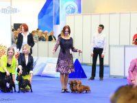 Formula Uspeha – Best Kennel in breed