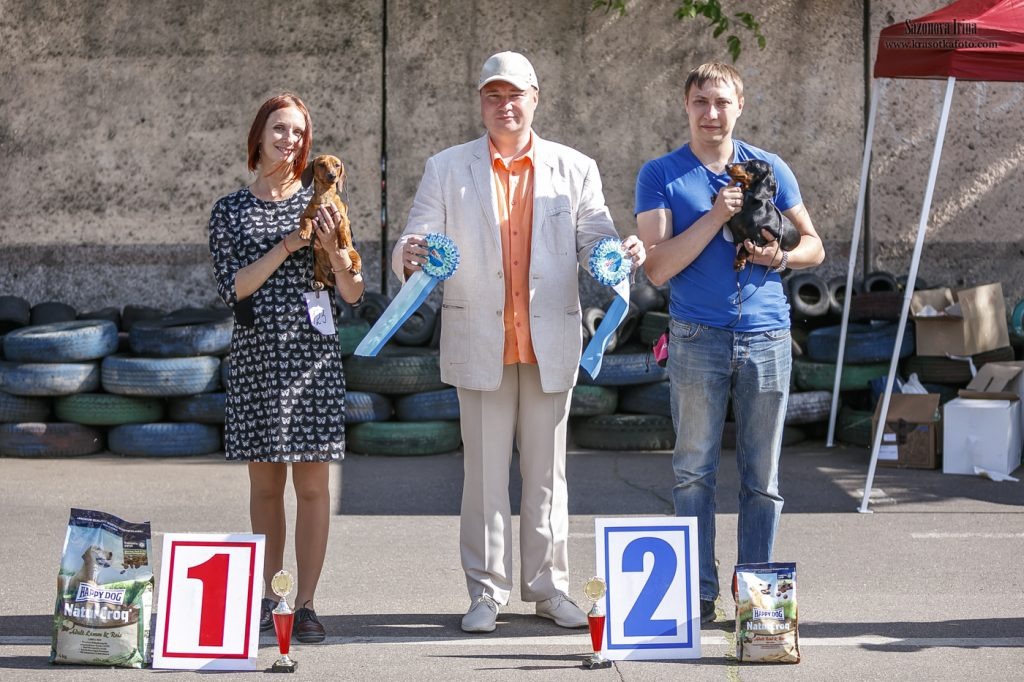 Formula Uspeha Raketa - JCW, Best Junior, BOB, 1-Best in Show Junior, 1-Best in Show adult!!!