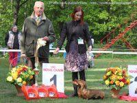 Formula Uspeha - 1-Best Kennel!