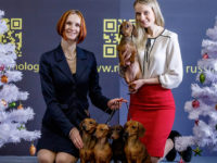 Formula Uspeha - 4 place Top Breeder Russian Cynological Federation and Top Breeder Dachshund Russian Cynological Federation- 2017!!!
