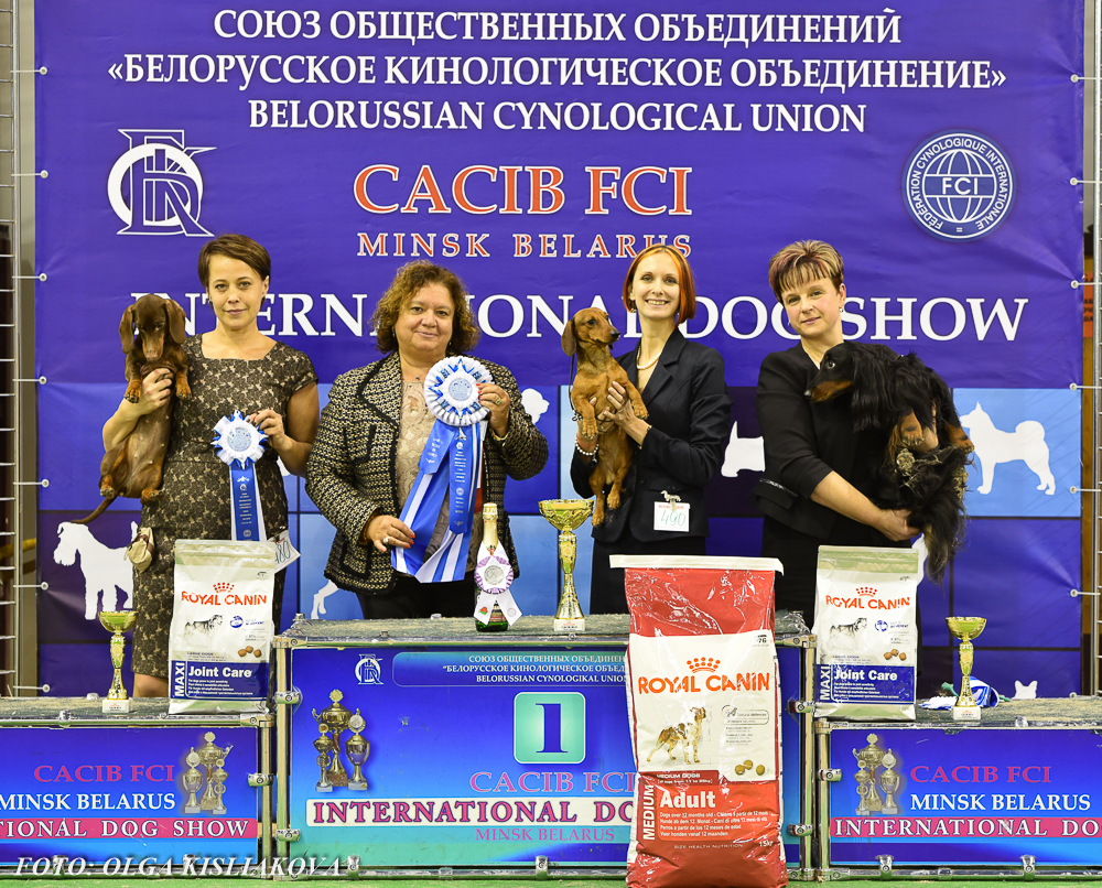 Formula Uspeha Top Gear - CAC, CACIB, BOB, 1-Best in Group!
