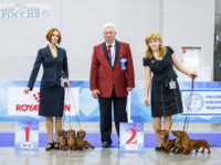 Formula Uspeha – Best Kennel in breed (kaninchen)!