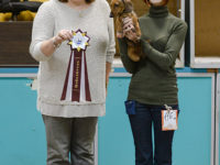 Formula Uspeha Solera Reserva - JCAC, Best Junior, BOB, Res.Best in Show Junior, 1-Best in Group