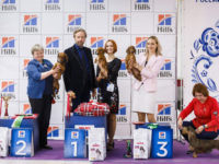 Formula Uspeha Laksmi (KS) – JCAC, BOB, 1-Best in Group!