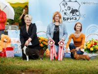 Formula Uspeha Karmen (ks) - Best puppy, Res.Best in Show Puppy!!