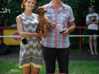 30.07.16 Russia. Moscow. Special Dachshund Show&NDS - Formula Uspeha Top Gear(MS) - 1 CW, BOB, 1-Best in Show!!! & 1-Best in Group