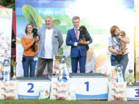 Formula Uspeha Cleopatra (ks) - CAC, BOB, Res.Best in Group, 1-Champion Show!!!
