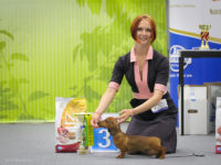 24.05.15 National Club Championship Show - Formula Uspeha Top Gear (4 months) – Best Baby, Res.Best in Show Baby