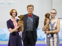 "18.11.17. Russia. Moscow. International Dog Show ""Russia"" - Formula Uspeha Top Gear - CAC, CACIB, CH RKF, BOS"