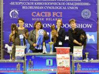 26.11.17 Belarussia. Minsk. International Dog Show. - Formula Uspeha Top Gear - CAC, CACIB, BOB, 1-Best in Group!