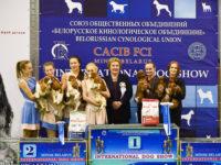 26.11.17 Belarussia. Minsk. International Dog Show. - Formula Uspeha Top Gear -1-Best in progeny!