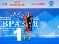 "05.05.2018. Russia. Moscow. International dog show ""Eurasia-1"" (5533 dogs) - Formula Uspeha Top Gear (MS) - CAC, CACIB, CH RKF, CH Eurasia, BOB, 1-Best in Group, New Interchampion!!!"
