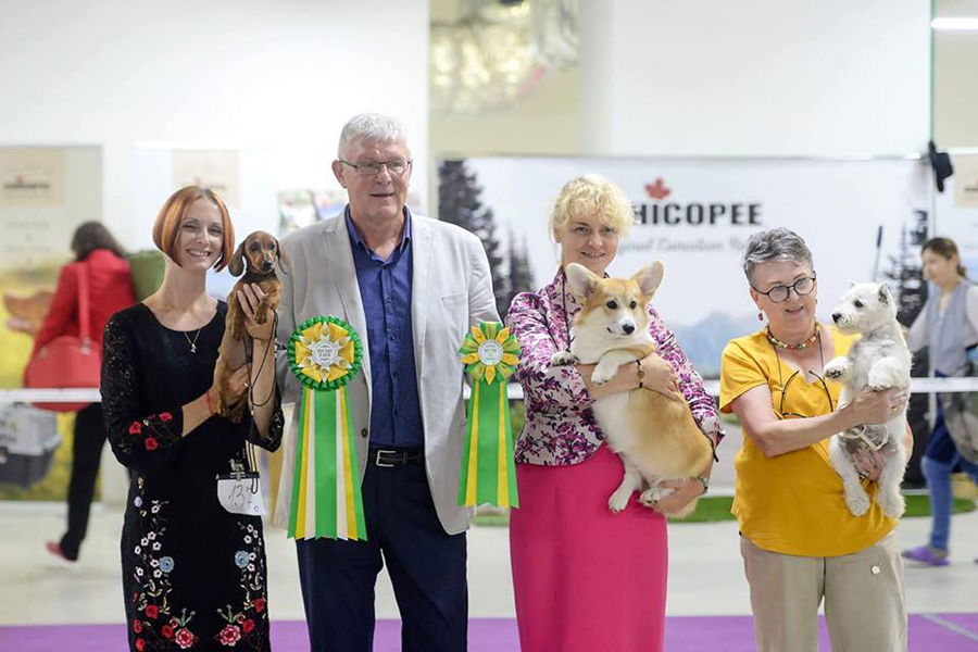 Formula Uspeha Style (ms) - Best Baby, 1-Best in show baby!!!