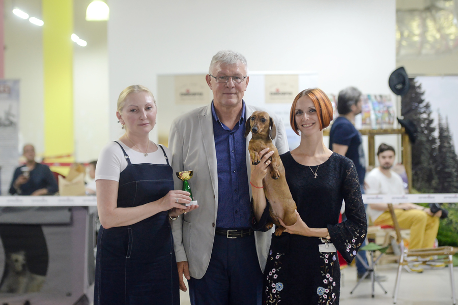 "Moscow. National dog show ""Atlantida""."
