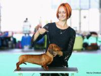 Formula Uspeha Solera Reserva (MS) - 1CW, Best Working dog (Working class)