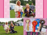 Formula Uspeha One Sweet Apple - CAC, NORDIC CAC and BEST OF BREED!