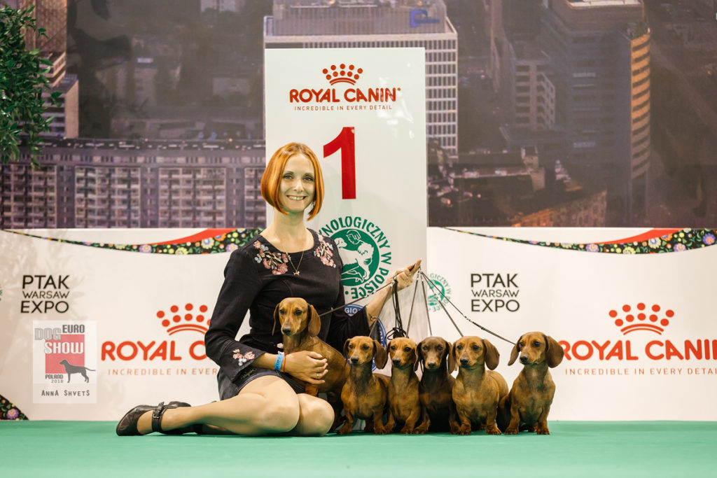 Formula Uspeha - Best Kennel in Breed