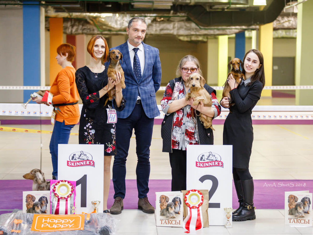 Formula Uspeha Top Gear (MS) - Club Winner, BOB, 1-Best in Show!