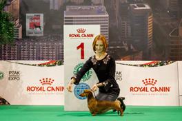 Poland. Euro Dog Show.