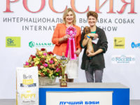 Formula Uspeha Bliss (MS) - Best Baby, 1-Best in Show Baby!!!