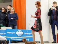 Formula Uspeha Bliss (ms) - Best puppy