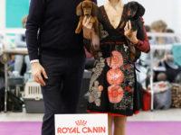 Formula Uspeha Jemzhujina (ks) - CAC, BOB, 1-BEST IN GROUP, RES.BEST IN SHOW!!! & Formula Uspeha Maserati - Best puppy, Res.Best in Show Puppy!!!