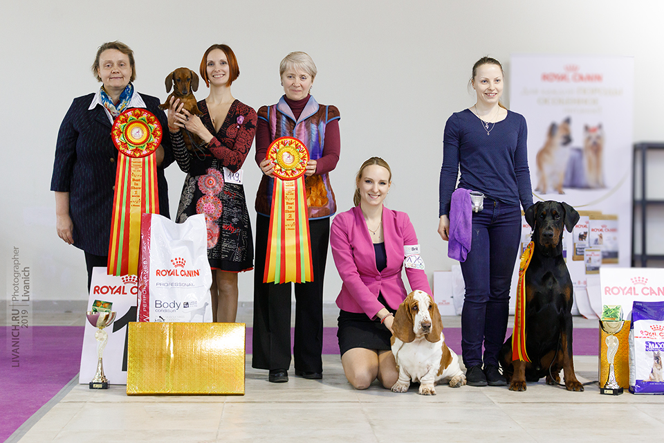 Formula Uspeha Malina - JCAC, JBOB, BOB, 1-BEST IN GROUP, RES.BEST IN SHOW JUNIOR, 1-BEST IN SHOW adult!!!!!!!