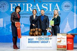 Евразия-2019 (6000 собак)